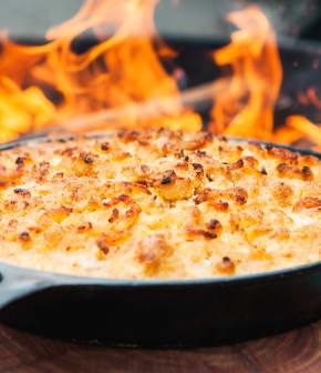 macaroni au fromage au jambon fumé et crevettes nordiques