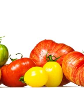 jus de tomates et espuma de tomate citron