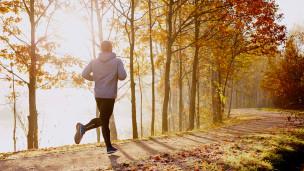 Course en sentier : où s'entraînent les pros ?