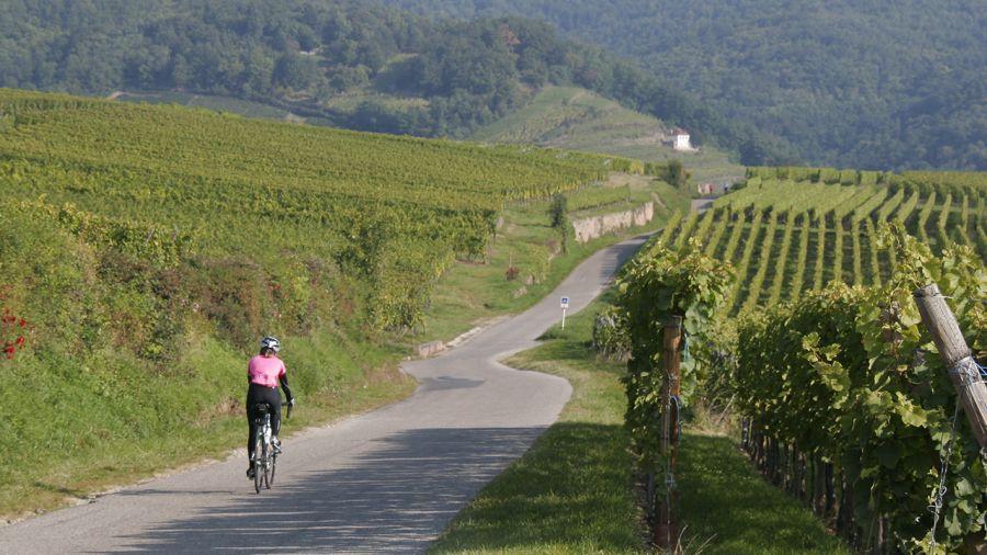 Europe : Le meilleur cru à vélo