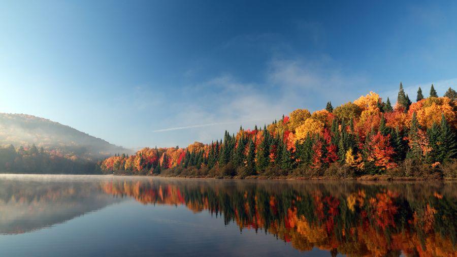 Les couleurs de l'automne : Questions & Réponses