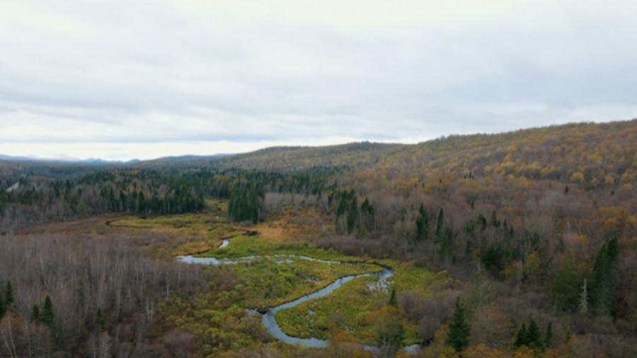 442 hectares de forêts acquis et protégés par Corridor appalachien à Eastman