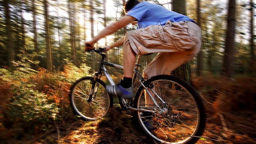 Vélo de montagne : Rouler coloré