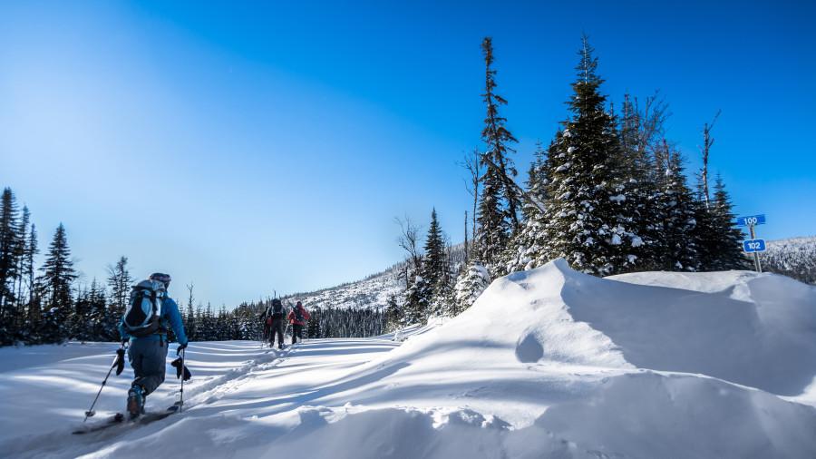 La forêt Montmorency en ski hors-piste