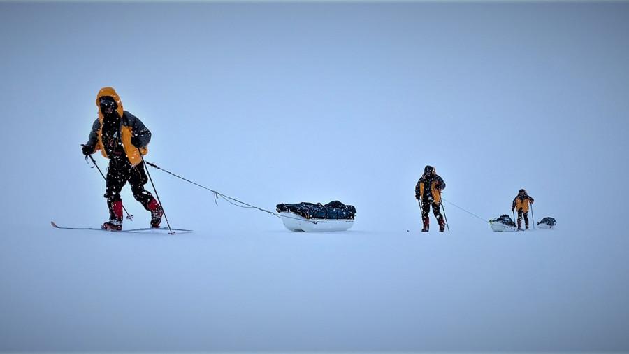 Expédition AKOR : trois humains à ski au royaume des ours polaires