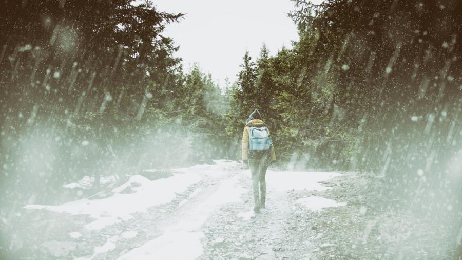 Les hivers de nos demains