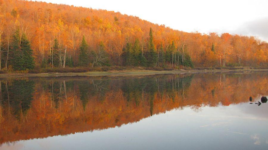 Réserve naturelle des Montagnes-Vertes : Délectation chromatique