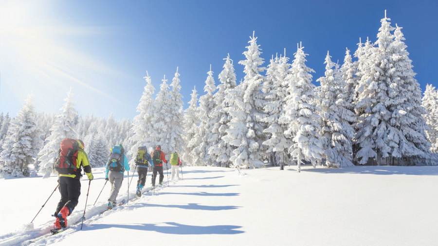 Menu quotidien pour sportifs hivernaux