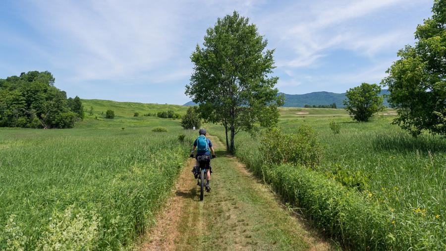 Vélo : Panorama Cycles, certifié carboneutre, compense ses émissions de CO2