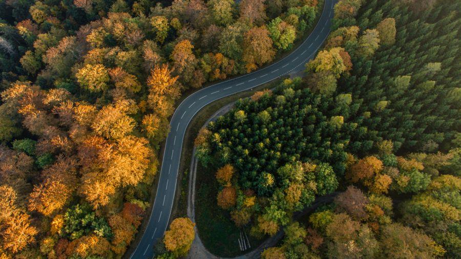 Road trips parfaits pour l'automne
