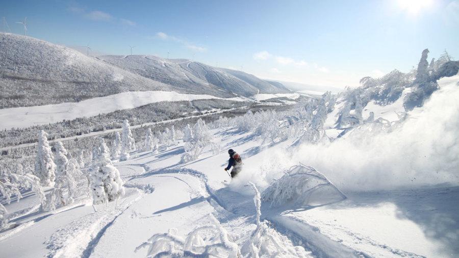 Ski hors-piste : sur la route de la poudreuse en Gaspésie