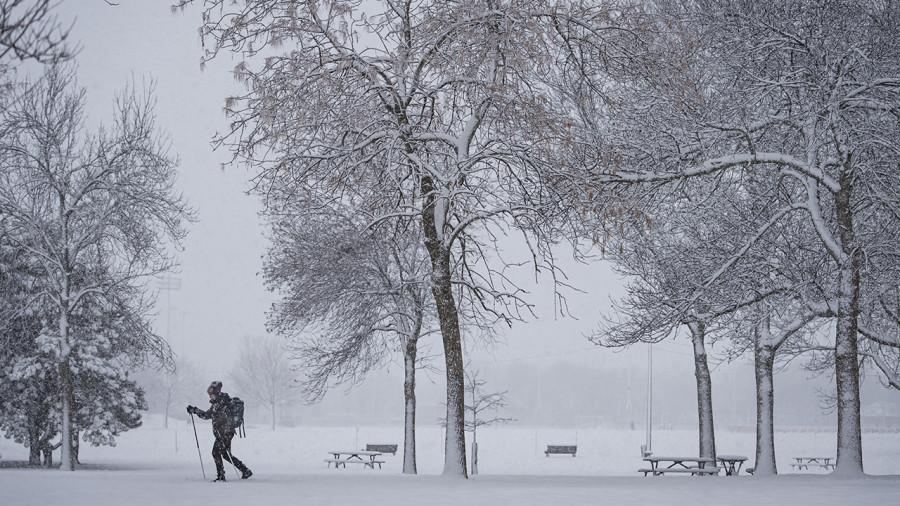 Tempête hivernale au Québec : jusqu'à 50 cm de neige