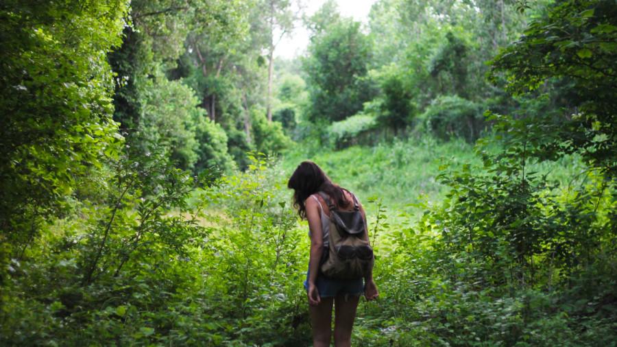 10 sentiers de randonnée gratuits au Québec
