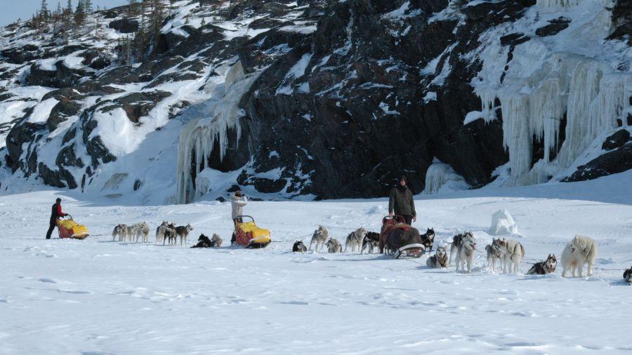 Traîneaux à chien : Réserve de Papineau-Labelle
