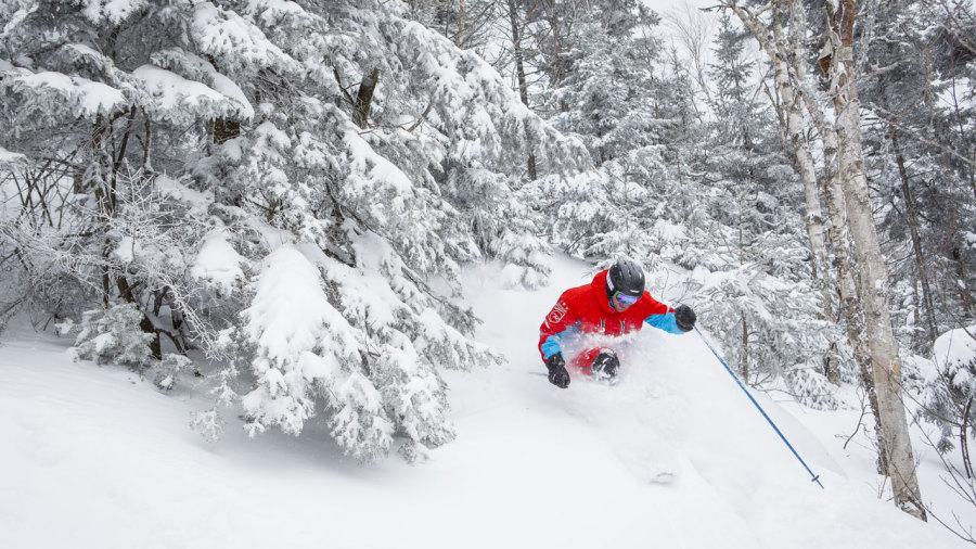 Ski : Top des plus beaux sous-bois du Québec