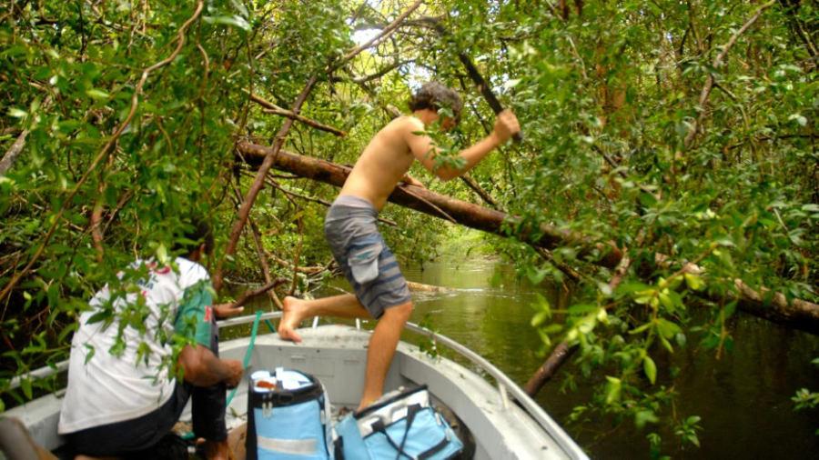 Frôler la catastrophe en Amazonie
