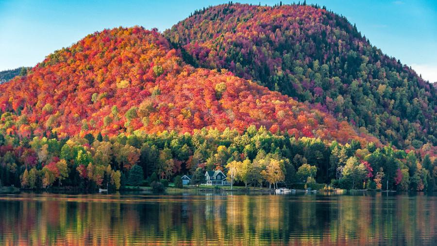 Une carte interactive pour suivre l'évolution des couleurs d'automne