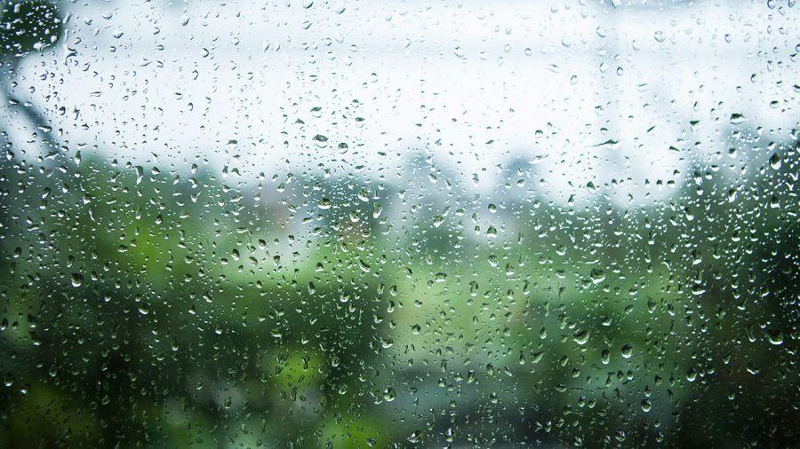 Vents, pluie, fraîcheur et confort