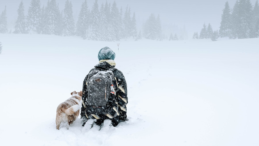 Conseils pour bien profiter de l'hiver, dehors, avec son chien