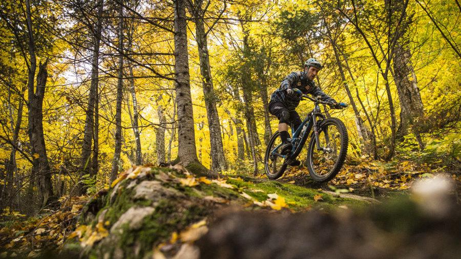 Du vélo de montagne haut en couleurs cet automne