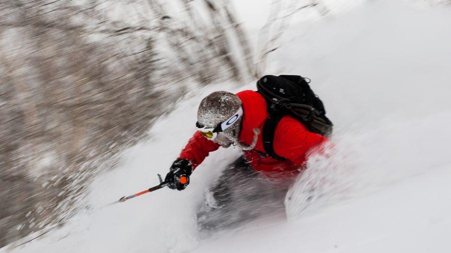 Skier nippon