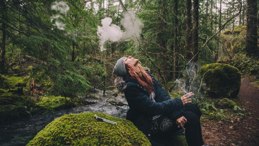 Le cannabis autorisé en camping dans les parcs nationaux