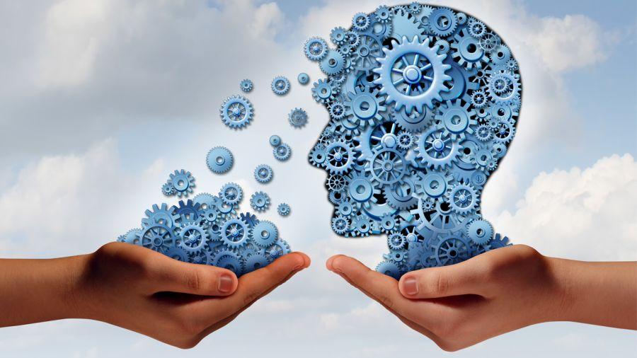 Développer les muscles de son cerveau : mythe ou réalité ?