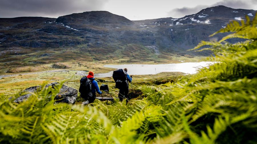 Scandinavie : L'accès libre à la nature