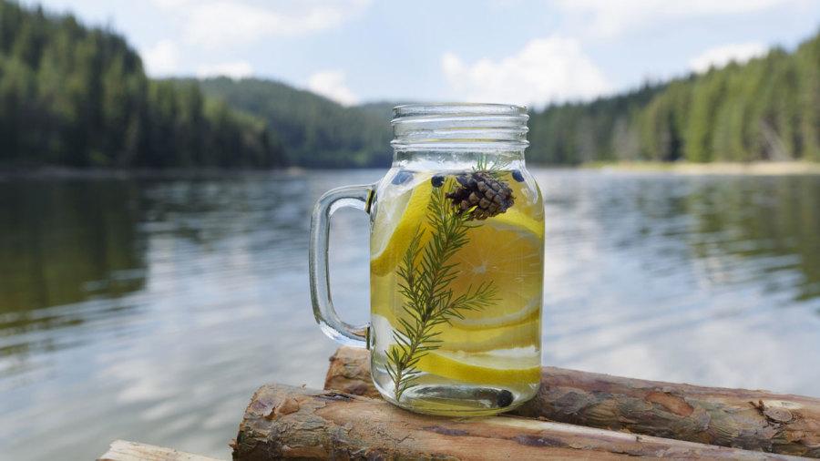 Des cocktails forestiers à préparer en camping