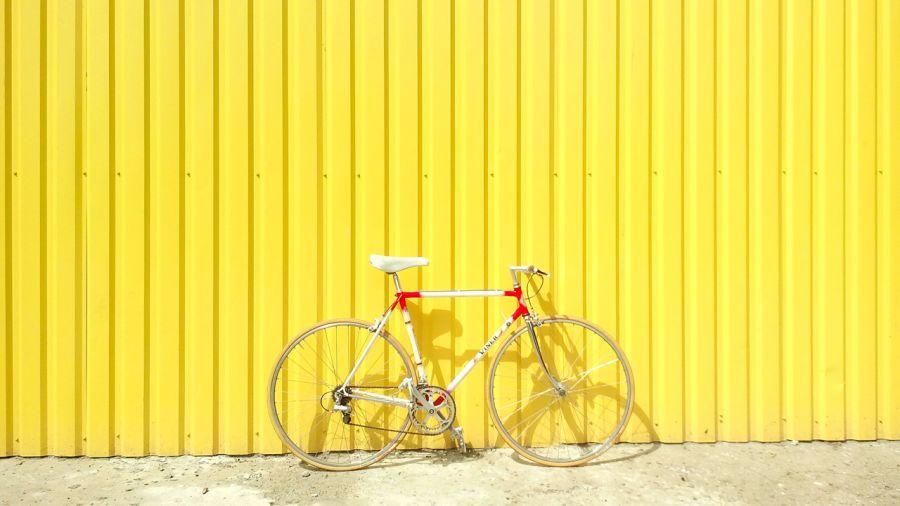 8 infos à savoir sur le vélo pour briller en société