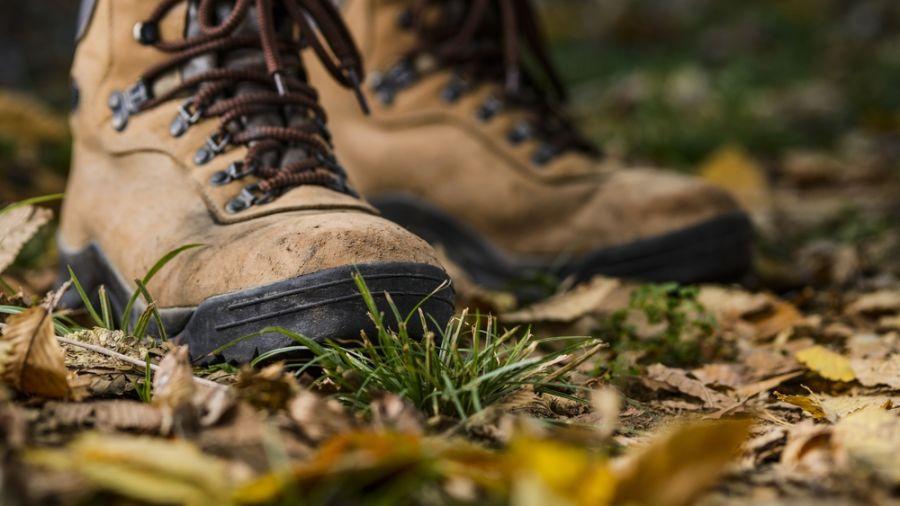 Se délier les jambes sur un sentier du comté de Brome-Missisquoi