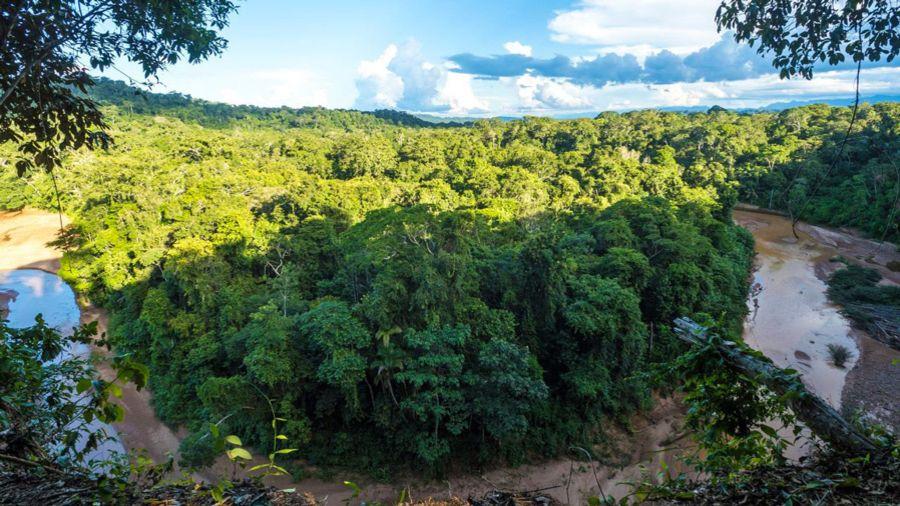 Dans la jungle amazonienne, côté Bolivie