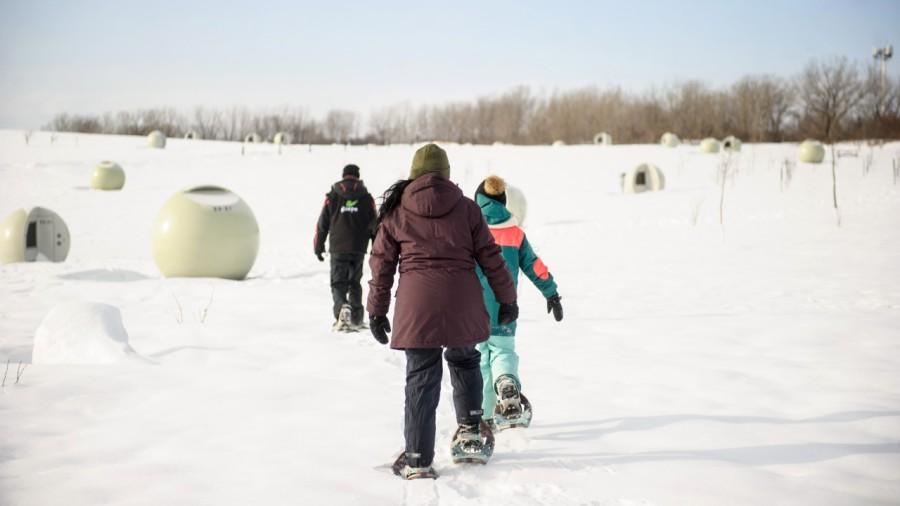 Découvrir le parc Frédéric-Back en hiver
