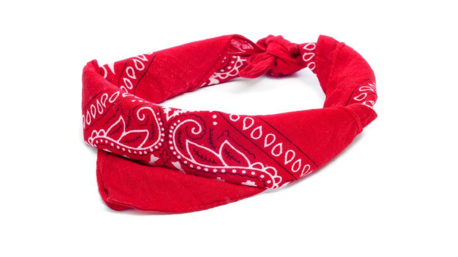 Indispensable bandana !