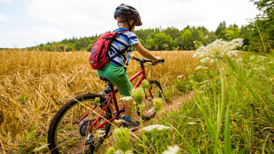 5 conseils pour initier vos enfants au vélo de montagne