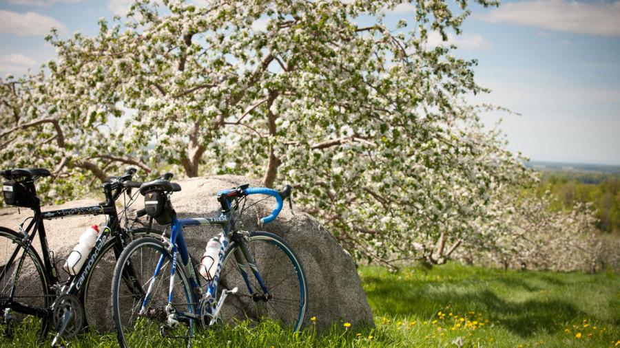 9 itinéraires de vélo de route pour le printemps