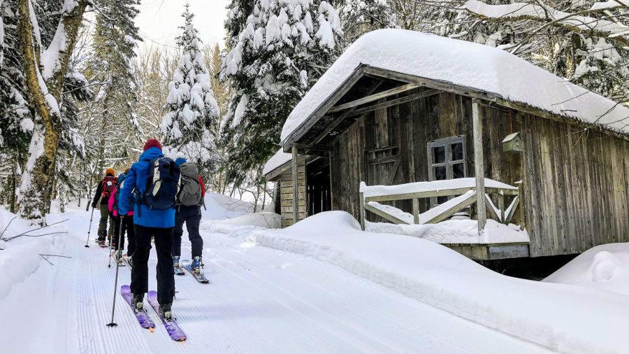 Parc régional du Massif du Sud : nouvelle neige sous les skis