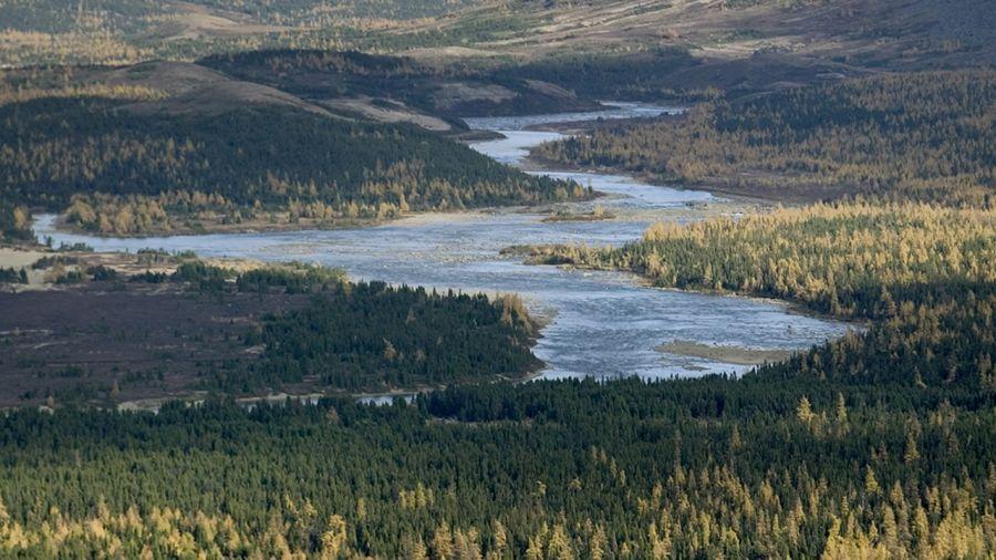 Projet de parc national dans le Grand Nord : un nouveau parc en 2008 ?