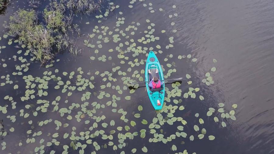 Vidéos : 4 excursions incontournables en kayak au Québec