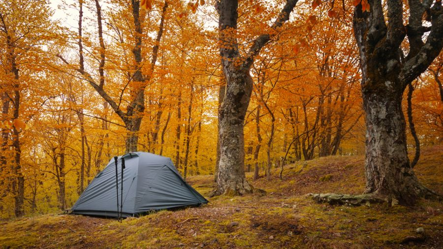 Campings colorés : 9 destinations au Québec