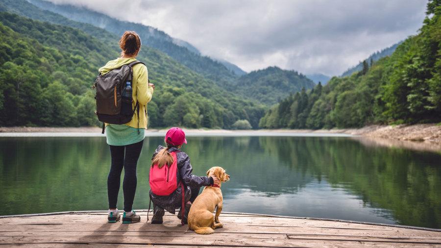 Sepaq : 12 sentiers coups de coeur pour randonner avec son chien