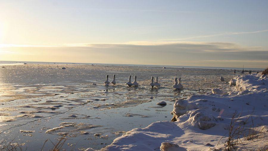 Parc régional de l'Île-Lebel : ondoyez le long du fleuve