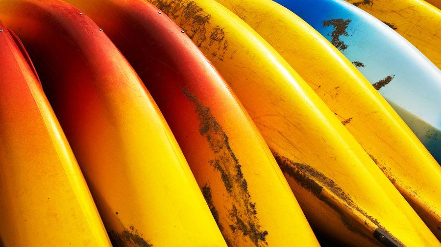 Canot et kayak : Les plus belles descentes