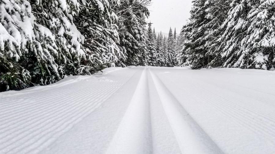 Le ski de fond fait son retour à la Forêt Montmorency