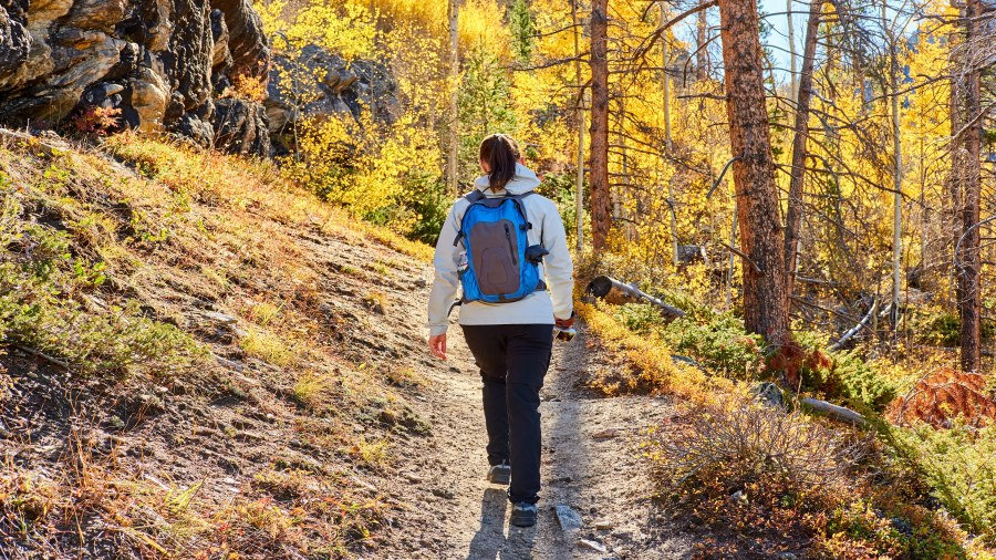 5 destinations de randonnée à découvrir au Québec cet automne