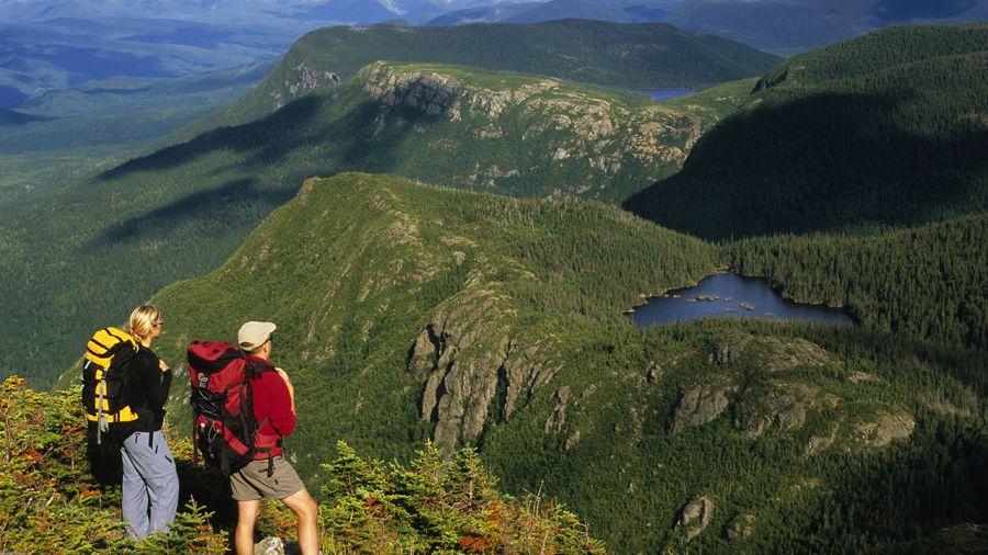 Les meilleurs safaris-photos au Québec