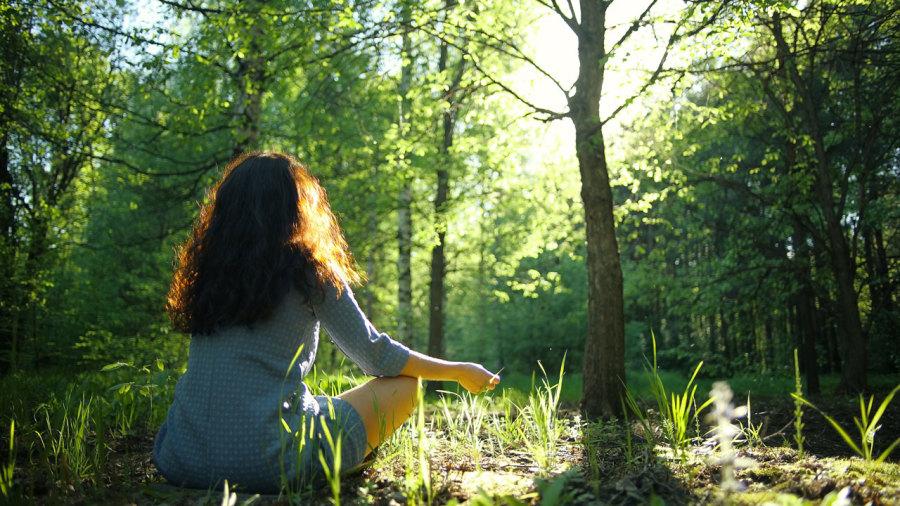 5 raisons d'essayer un bain de forêt