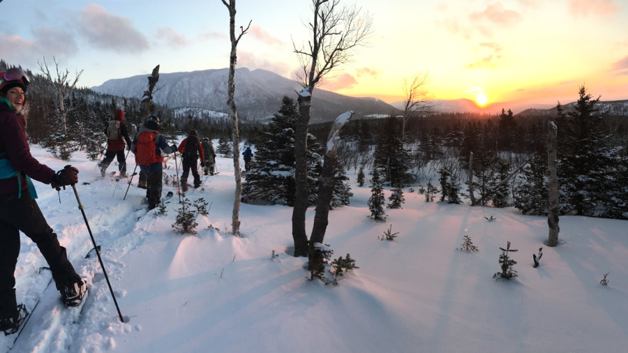 Ski hors-piste : Skier l'or blanc dans la réserve de Matane