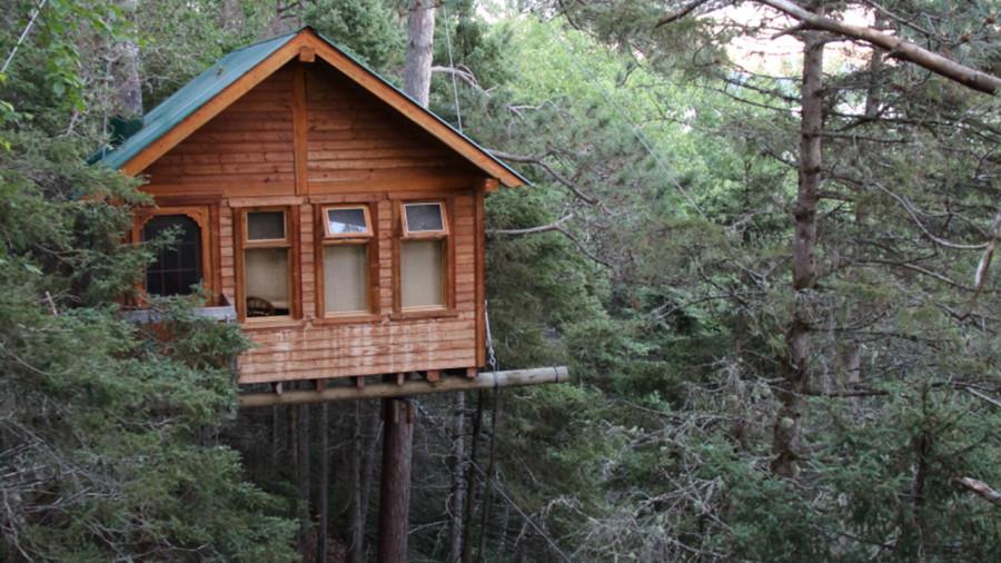 Cabanes dans les arbres: 13 endroits à découvrir au Québec