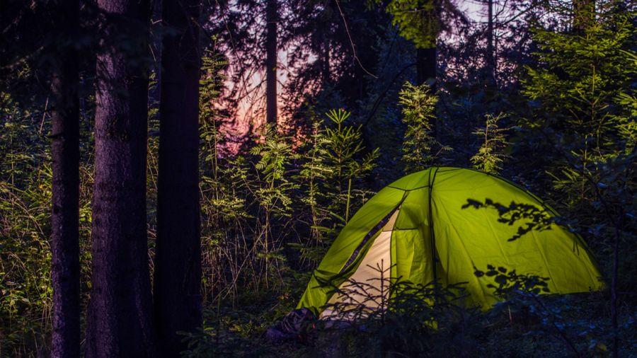 10 campings gratuits dans le nord-est des États-Unis